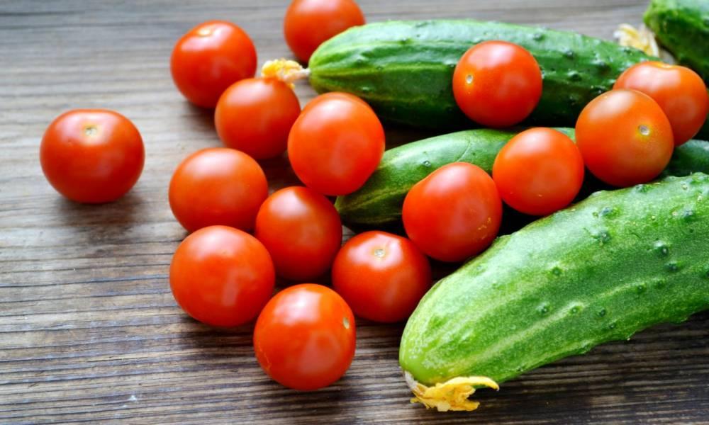 Працівник теплиці. Збір помідорів та огірків